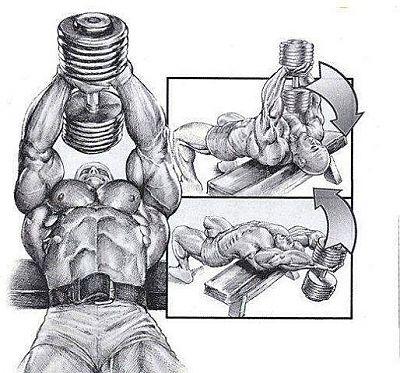 упражнения гантелями для сжигания жира
