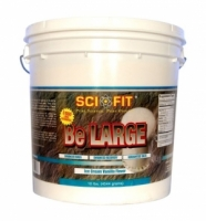 SCIFIT Be Large 4544 грамм