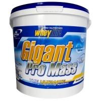Pro Nutrition Whey Line GIGANT PRO MASS 5 кг