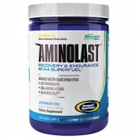 Gaspari Nutrition Aminolast 420 грамм