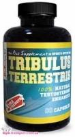 BioTech USA  BioTech Nutrition Tribulus Terrestris - 60 капс