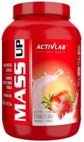 Activlab Mass UP 2000 g