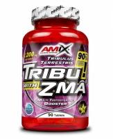 Amix Tribu ZMA 90 tablets