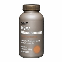 GNS MSM & GLUCOSAMINE 90 капс