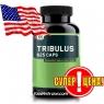 Optimum Nutrition TRIBULUS 625 100 caps