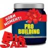Pro Nutrition Pro Building 500 грамм