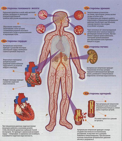 Последовательность действия измерения артериального давления