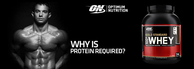 Optimum Nutrition спортпит