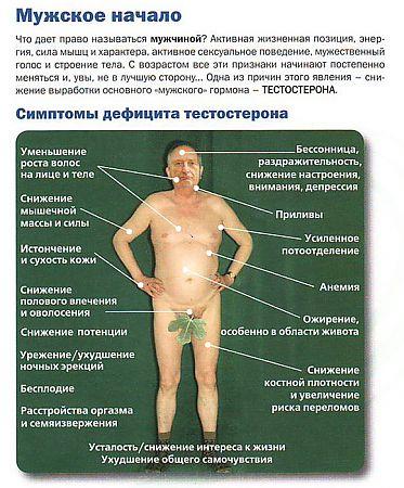 Как повысить уровень тестостерона натуральными методами